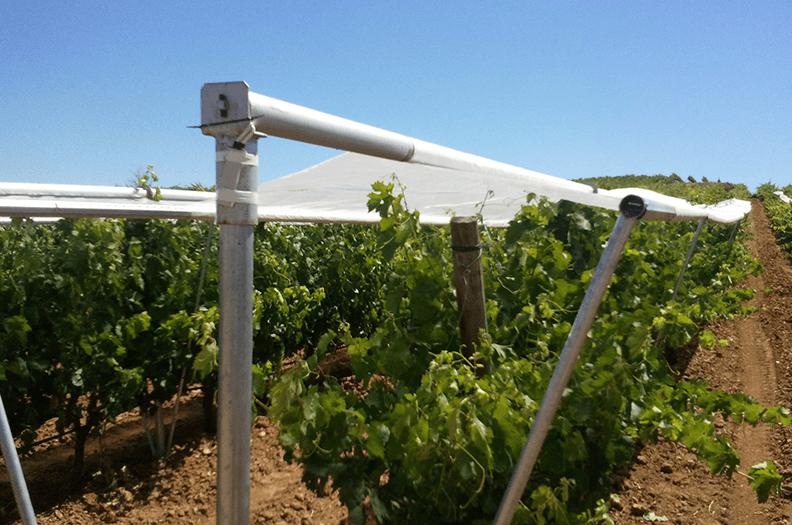Dessa notrörsprofiler inom jordbrukstekniken är optimerade vad gäller funktion och vikt när de används som vädersskydd.