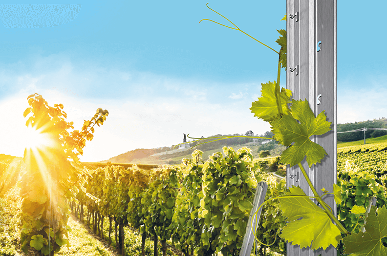 Our vineyard posts impress with high torsional stiffness and weather resistance.